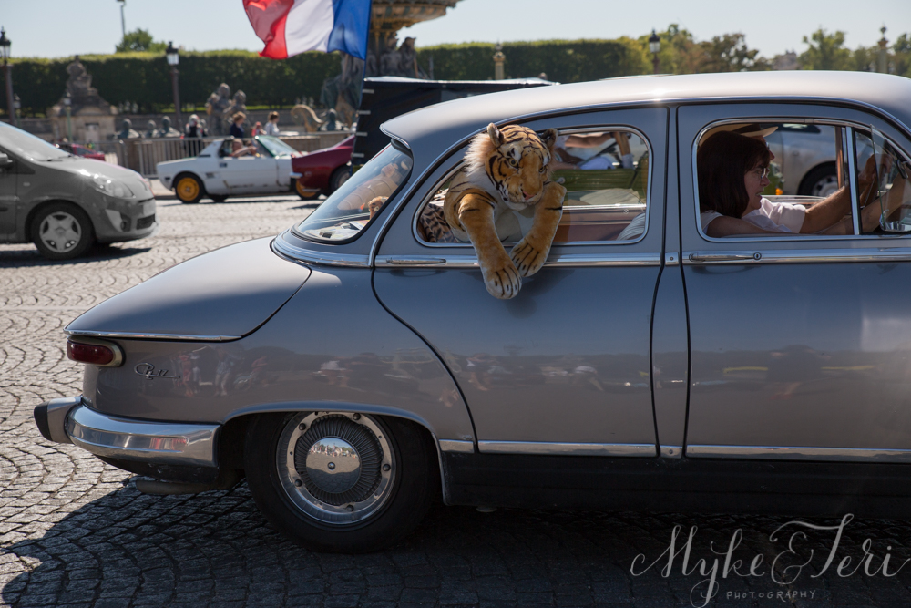 tiger in vintage car