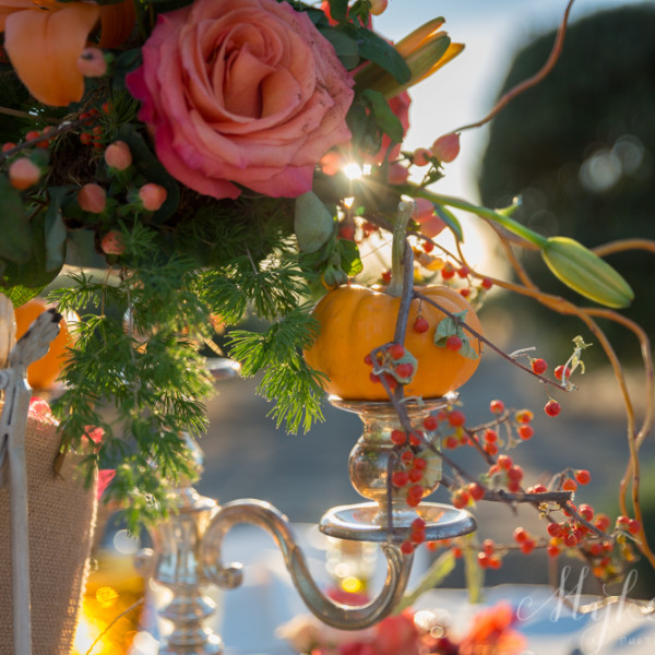 Fall Maroons, Golds and Pumpkins: A Vintage Inspired Outdoor Wedding in Livermore