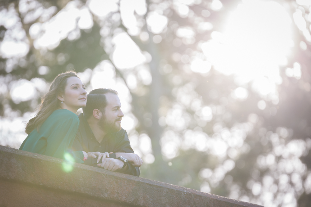 Early Blooms + a Storybook Bridge: Golden Gate Park Engagement
