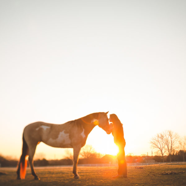 Saddle-Up Sunrise: Horse Portrait Session in Dallas, Texas