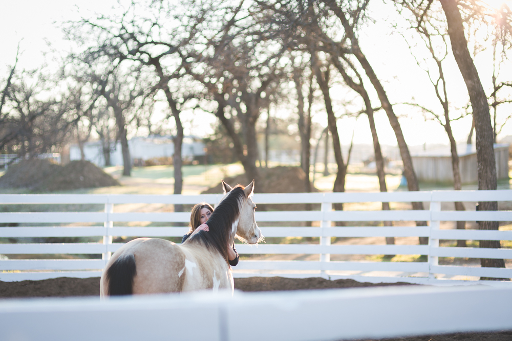 dallas texas horse phototgraphy portrait session-0733